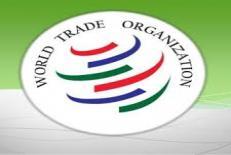 دانلود مقاله  سازمان تجارت جهانی (wto)