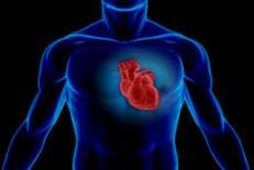 دانلود پاورپوینت پرستاری بیماری های قلب و عروق